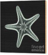 Starfish X-ray Wood Print