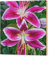 Stargazer Oriental Lilies Wood Print