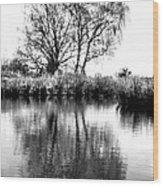 Stark Reflections Wood Print