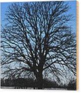 Stark Tree Wood Print