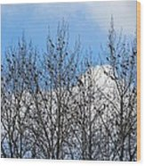 Starlings In The Cottonwoods Wood Print