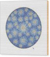 Starlit Sky Wood Print