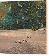Starry Beach Night Wood Print by Betsy Knapp