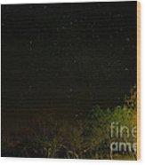 Starry Night Wood Print