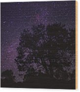 Starry Sky With Silhouetted Oak Tree Wood Print
