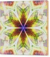 Starseed Rainbow Wood Print