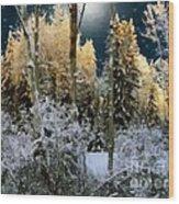 Starshine On A Snowy Wood Wood Print