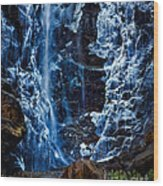 Start Of Spring Bridalvail Fall Wood Print
