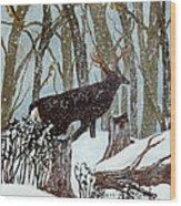 Startled Buck - White Tail Deer Wood Print