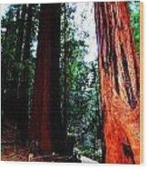 Stately Wood Print