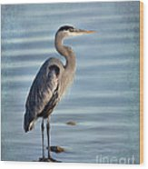 Stately-great Blue Heron Wood Print