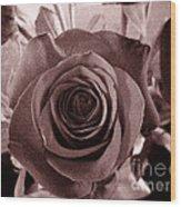 Static Rose Wood Print