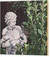 Statue 1 Wood Print
