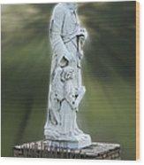 Statue 20 Wood Print