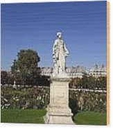 Statue At The Jardin Des Tuileries In Paris France Wood Print