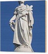 Statue Gettysburg Wood Print