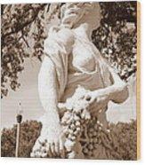 Statue In St Petersburg Wood Print