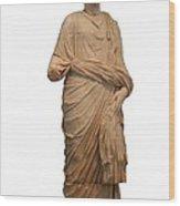 Statue Of A Roman Priest Wearing A Toga Wood Print