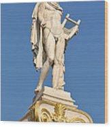 Statue Of Apollo Wood Print