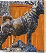 Statue Of Balto In Nyc Central Park Wood Print by Anthony Sacco
