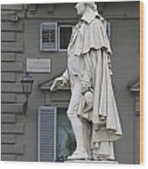 Statue Of Carlo Goldoni Wood Print
