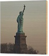 Statue Of Liberty From The Jersey Side Wood Print