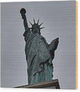 Statue Of Liberty - Paris France - 01131 Wood Print