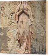 Statue Of Mary In Mission Garden Wood Print