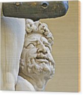 Statues Of Hercules And Cacus Wood Print