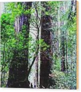 Stature Wood Print