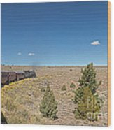 Steam Engine 489 At The Lava Tank On The Cumbres And Toltec Scenic Railroad Wood Print