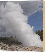 Steamboat Geyser Yellowstone Np Wood Print