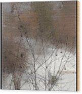 Steamy Window Wood Print