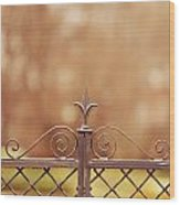 Steel Ornamented Fence Wood Print