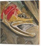 Steelhead Buck Wood Print