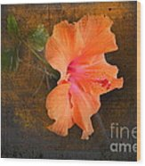 Steely Hibiscus Wood Print by The Stone Age