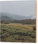 Steens Mountain Landscape - No 2a Wood Print
