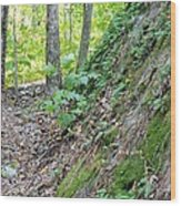 Steep Incline Around The Mountain Wood Print