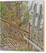 Steep Steps To Beach - Finger Lakes Wood Print