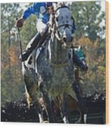 Steeplechase Wood Print
