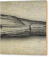 Stegosaurus Tail Spike Wood Print
