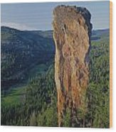 1a5719 Steins Pillar Oregon Wood Print