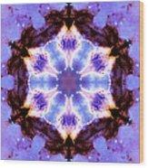 Stellar Spiral Eagle Nebula IIi Wood Print