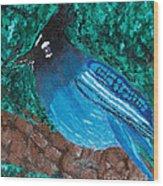 Stellar's Jay Wood Print by Lloyd Alexander