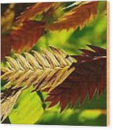 Stem Macro Wood Print
