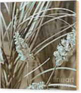 Stems II Wood Print by Yanni Theodorou