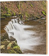 Step In The Scaleber Force Waterfall Wood Print