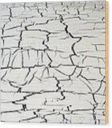 Step On A Crack Wood Print