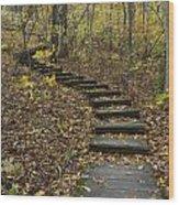 Step Trail In Woods 15 Wood Print