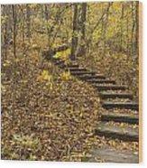 Step Trail In Woods 16 Wood Print